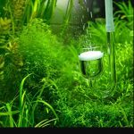 Best CO2 Diffusers for Aquarium
